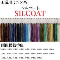 カナガワ ボタン付けスパン手縫糸シルコート #20/30m 36番色 slc20/30-036 1セット(5個×30m巻)(直送品)