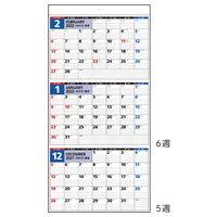 高橋書店 【2022年版】エコカレンダー壁掛 3カ月一覧 A2変型 E5 1セット(2冊)(直送品)