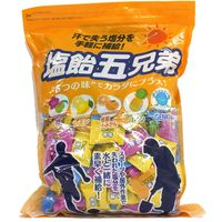 ランドアート 塩飴五兄弟(800g) 800-5350 1袋(直送品)