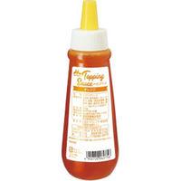 森永乳業 業務用 トッピングソースオレンジ 11813 1ケース 500g×12本(直送品)