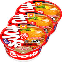 赤いきつねうどん ミニサイズ 251698 1セット(3食入) 東洋水産