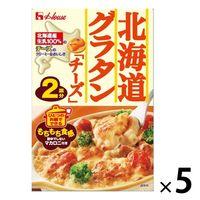 北海道グラタンチーズ マカロニ付き 2皿分 1セット(5個) ハウス食品