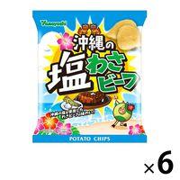 山芳製菓 ポテトチップス 沖縄の塩わさビーフ 6袋 スナック菓子