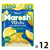 マロッシュ レモンスカッシュ味 50g 12袋 カンロ グミ キャンディ