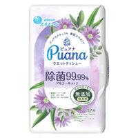 ウェットティシュー 本体 42枚入 エリエール ピュアナ(Puana)除菌99.99% 大王製紙
