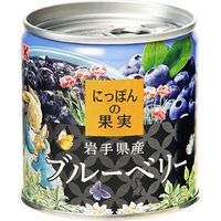 国分グループ本社 KK にっぽんの果実 岩手県産ブルーベリー EO M2号缶×12 0117926 1ケース(12入)(直送品)