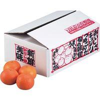 ヤマニパッケージ 新鮮みかん5kg L-426 1ケース(60:10枚結束)(直送品)