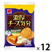 三幸製菓 チーズ気分 1ケース(240枚:20枚入×12袋)