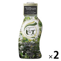 【数量限定】フレグランスニュービーズジェル フローラルフォレストの香り 本体 780g 1セット(2個入) 衣料用洗剤 花王