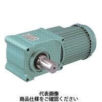 椿本チエイン ギアードモーター ハイポイドモートル TAシリーズ(三相200V) HMTA040-28U10T 1個(直送品)