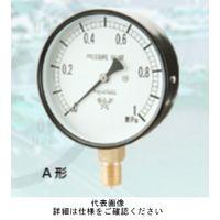 右下精器製造 普通型圧力計 汎用圧力計 スターゲージ AT3/8-75X2MPA 1個 (直送品)