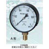 右下精器製造 普通型圧力計 一般圧力計 耐振用 AVT1/4-60X0.16MPA 1個 (直送品)