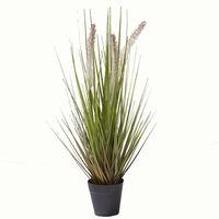 萩原 CATTAIL GRASS キャットグラス 高さ約53cm 光触媒加工付き 人工観葉植物 1鉢 (直送品)