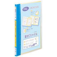 レイメイ藤井 賞状ファイル B4 ブルー LSB80A 2個 (直送品)