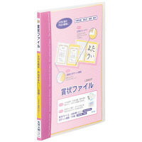 レイメイ藤井 賞状ファイル B4ピンク LSB80P 2個 (直送品)