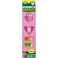 レイメイ藤井 三角かきかた鉛筆B(6本入)ピンク RE305 5個 (直送品)