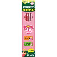レイメイ藤井 三角かきかた鉛筆2B(6本入) ピンク RE307 5個 (直送品)