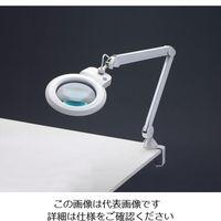 esco(エスコ) x2.25/170mmアームルーペ(56灯LEDライト付) EA756TW-2A 1台 (直送品)
