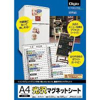 ナカバヤシ 光沢マグネットシート/A4 2枚 JPMAG-A4G 10個 (直送品)