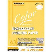 ナカバヤシ コピー&プリンタ用紙 A3 イエロー 100枚 HCP-3101-Y 20個 (直送品)