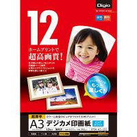 ナカバヤシ デジカメ印画紙/強光沢/A3/12枚 JPSK-A3-12G 10個 (直送品)