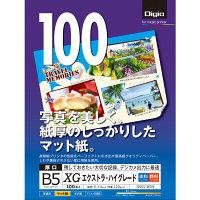 ナカバヤシ インクジェット用紙/B5/100枚/エキストラハイグレード JPXG-B5N 10個 (直送品)