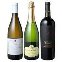 赤・白・スパークリングワインよりどり厳選セット W-ST16042998 1セット(3本) (直送品)