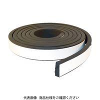 トラスコ中山(TRUSCO) TRUSCO EPDM高機能スキマテープ シャッター用 50X20mmX3. TSKM-3552 819-5033(直送品)