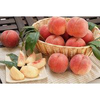 【お試し】山形県のお試し白桃1.5kg