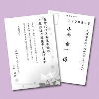 サンワサプライ インクジェット喪中はがき(スイレン) JP-HKRE13N 5セット (直送品)