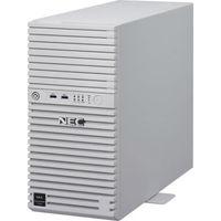 NEC Express5800/T110h(4C/E3ー1220v5ーW2012) NP8100-2312YPKY 1式  (直送品)