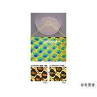 AGCテクノグラス EZSPHERE(スフェロイド形成培養用容器) マイクロプレート 96well 5枚 4860-900 61-9713-30 (直送品)
