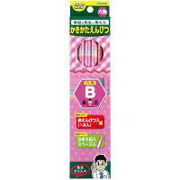 レイメイ藤井 先生オススメ かきかた鉛筆B(鉛筆11本+赤鉛筆1本)ピンク RE644 2箱(12本入×2箱)(直送品)