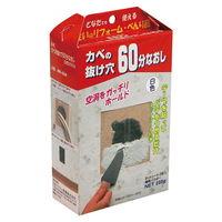 日本ミラコン産業 カベの抜け穴60分ナオシ 200G MR-004 1セット(2000g:200g×10個)(直送品)