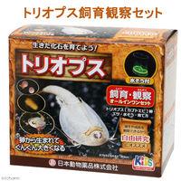 日本動物薬品 トリオプス飼育観察セット カブトエビ 332585