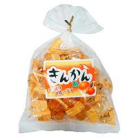日進医療器 おいしいのど飴 きんかん210g 189148 1袋(210g)