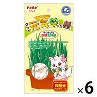 ペティオ ペティオ ネコの元気草の種(15g*5包入)