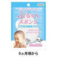 こんにゃくスポンジ ぷるるんスポンジ 植物性 敏感肌 1個 テクセルジャパン