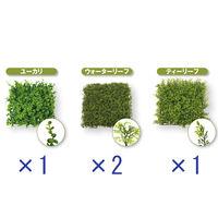 ビバ工芸 ビバ工芸 ウォールグリーン 3種類アソートセット(1セット4 VDG5361・5339・5338 1セット(4枚入)