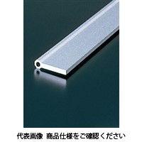 エヌアイシ・オートテック SP 蝶番フレーム 568mm AFH-0940-568 1セット(20本)(直送品)