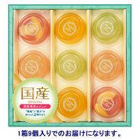 国産果実のジュレ 1箱(9個入)