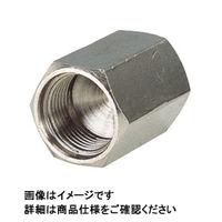 日本ピスコ メインブロック キャップ MCP08 1セット(30個:1個×30) (直送品)