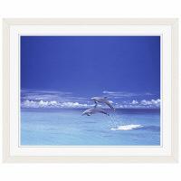 アートプリントジャパン 「青い海とイルカ」 フレーム/S/ホワイト 1枚