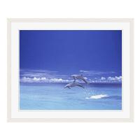 アートプリントジャパン 「青い海とイルカ」 フレーム/L/ホワイト 1枚