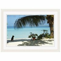 アートプリントジャパン 「lagoon with palm frand and watch dog」 フレーム/S/ホワイト 1枚