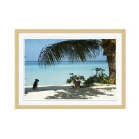 アートプリントジャパン 「lagoon with palm frand and watch dog」 フレーム/M/木目 1枚