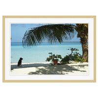 アートプリントジャパン 「lagoon with palm frand and watch dog」 フレーム/XL/木目 1枚