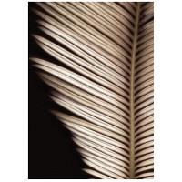 アートプリントジャパン 「Palmistry by Nathan Griffith」 キャンバス/L 1枚