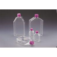 AGCテクノグラス 組織培養用フラスコ(付着性細胞用)25cm2 ダブルシールキャップ 1ケース300個入 3100-025 1ケース  (直送品)