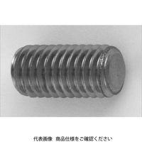 ファスニング J 3カーW 鋼 六角穴付き止めねじ(ホーローセット)(平先) 6 X 8 A00050100060008003 1箱(1000個)(直送品)